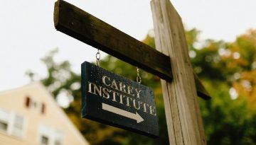 CareySign