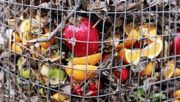 Community-Compost-closeup-1