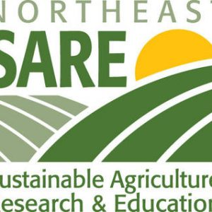 northeast-sare-logo_large-1